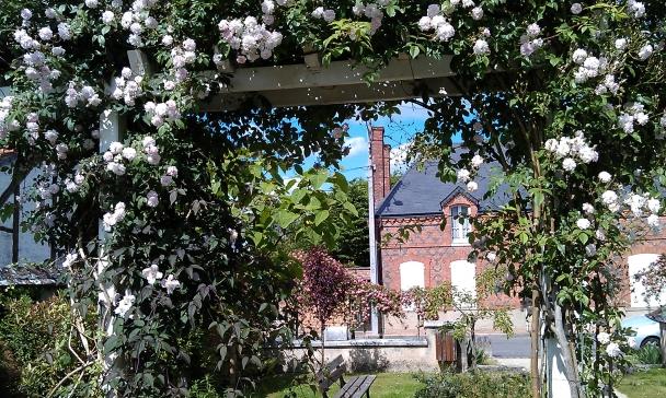 Profusion de roses sur briques à Pierrefitte-sur-Sauldre village fleuri en Sologne authentique